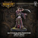 Cryx Satyxis Blood Priestess RESIN Blister